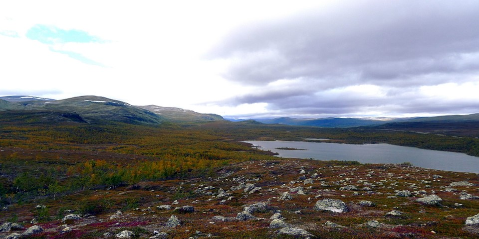 Autumn colours in Lapland