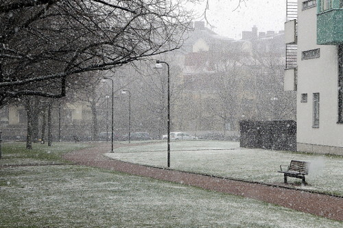 Luostaripuisto, lunta toukokuussa