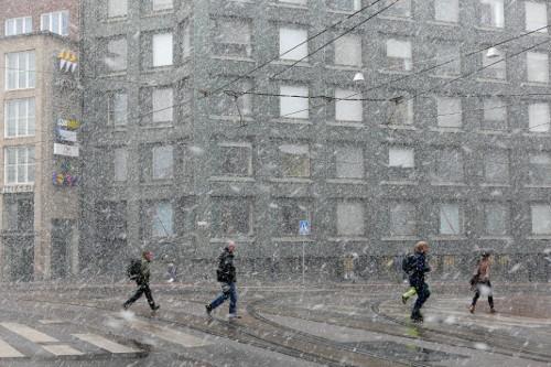 Toukokuinen lumisade Kampissa