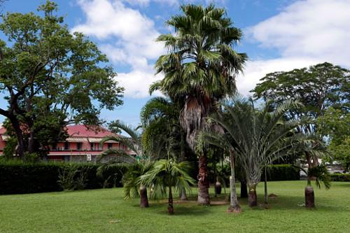 Kasvitieteellinen puutarha, Roseau (Dominica)
