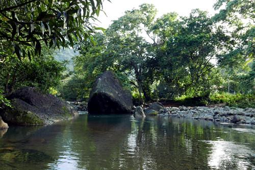 Pagua River, Dominica