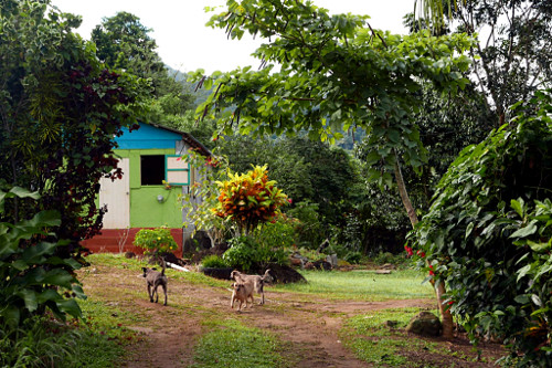 Airbnb, Touna (Dominica)
