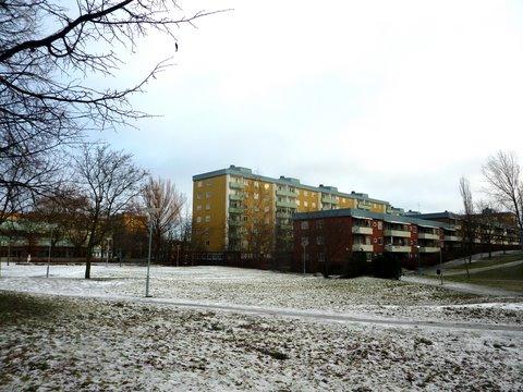 Luminen nurmikko ja kerrostaloja Rinkebyssä