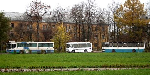 Three buses at Volkhov bus station