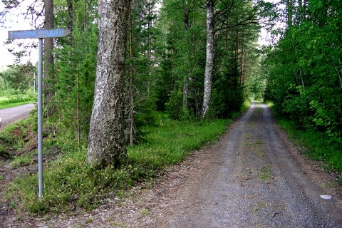 Small road to Blue Saimaa Art Institute
