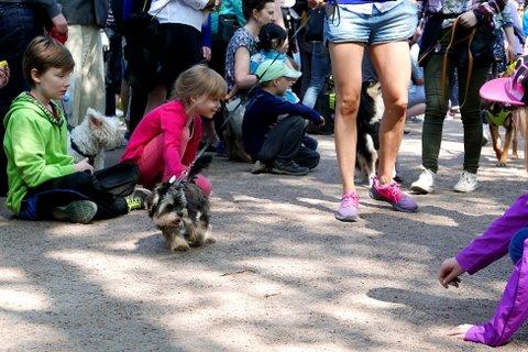 Enfants étaient impatients de voir et de toucher les chiots
