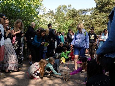 Lapsia silittämässä koiranpentua