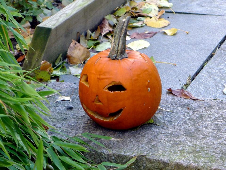 Halloween-kurpitsa / Halloween pumpkin