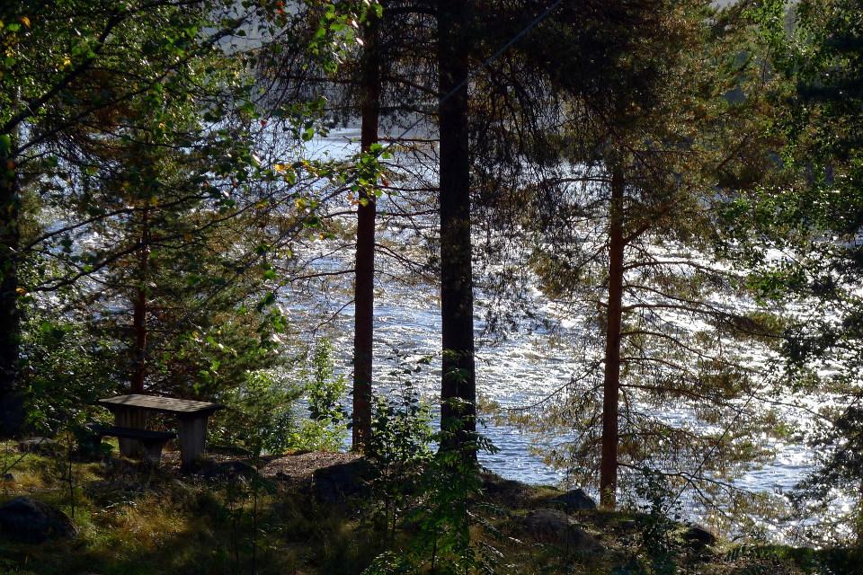 Räktforsen, Kalixjoki / Kalix River (Sweden)