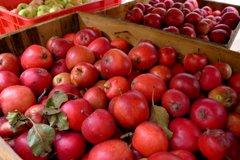 Punaisia omenoita