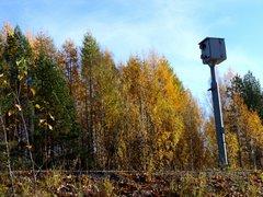 Selfie-pylväs, Mikkeli
