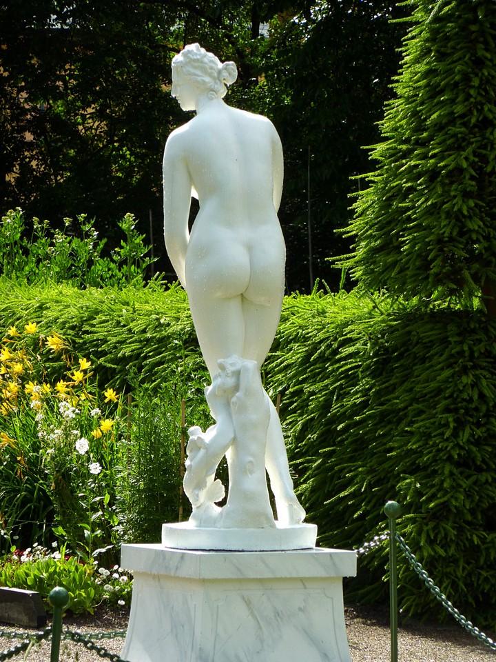 Photo 194 v nus jardin de linn uppsala su de for Le jardin de venus x
