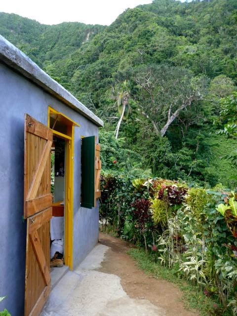 Talo ja puutarha