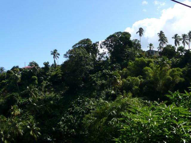 Houses on the ridge