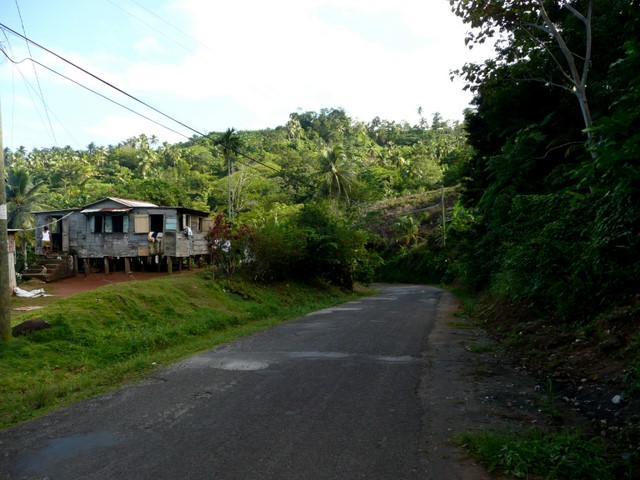House and road