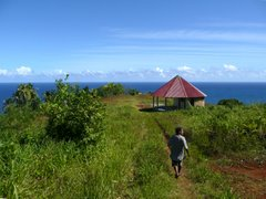 Sineku, Dominica
