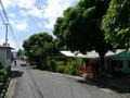 Scottshead road