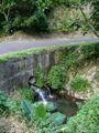 Aouya River