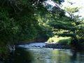 Castle Bruce River (2)