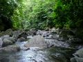 Sari-Sari River