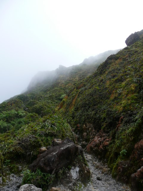 Sentier (2)