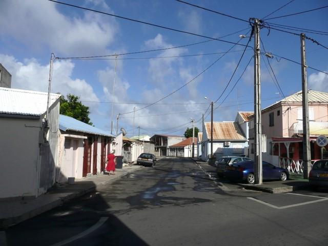 Rue (3)
