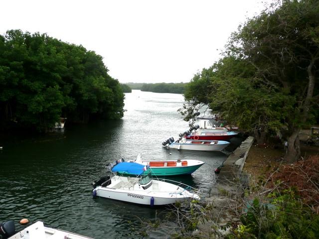Audoin river