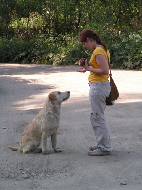 Dog & Hanne