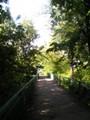 Kävelysilta