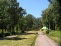 Molodozhenovin puisto
