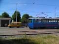 Minibus et tramway