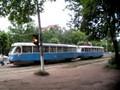 Sinivalkoinen raitiovaunupari