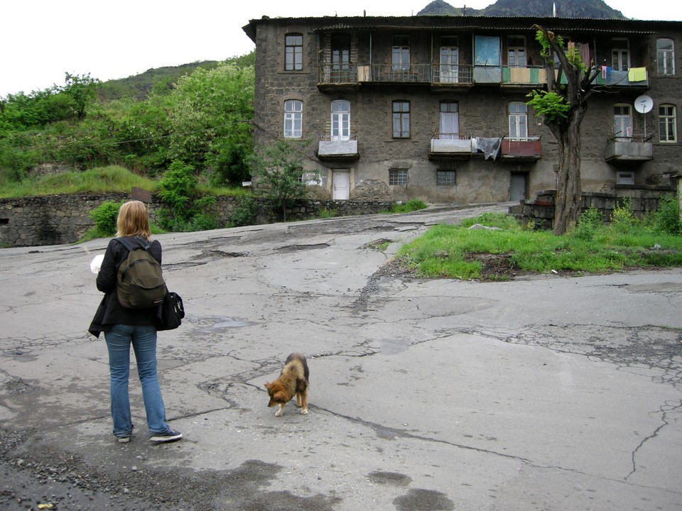 In Alaverdi too, we met a hungry dog