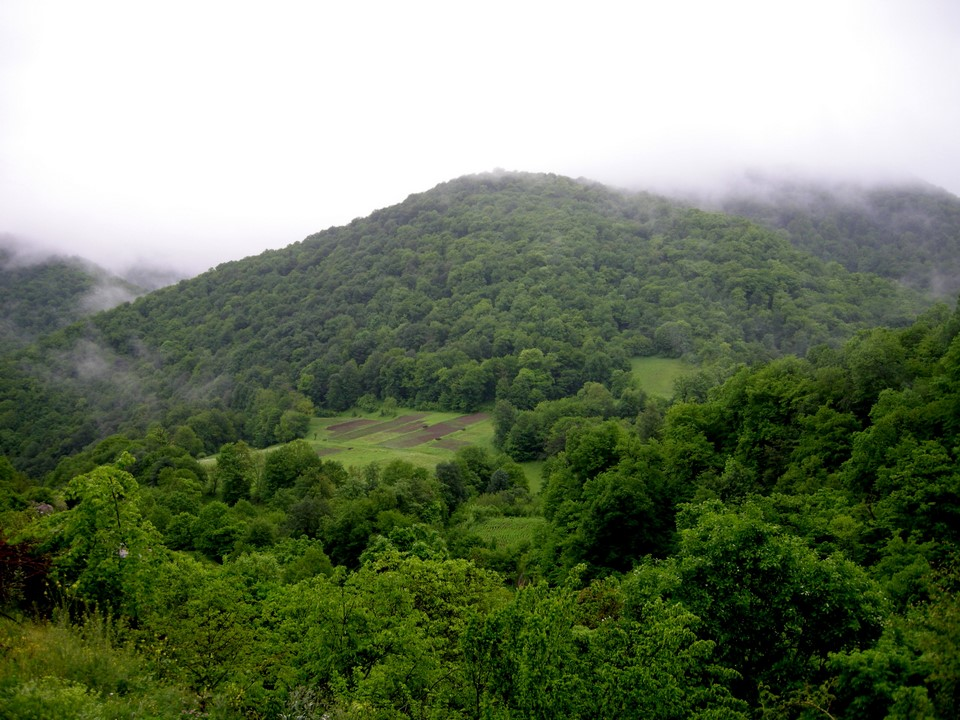 Forested hills in the vicinity of Gosh