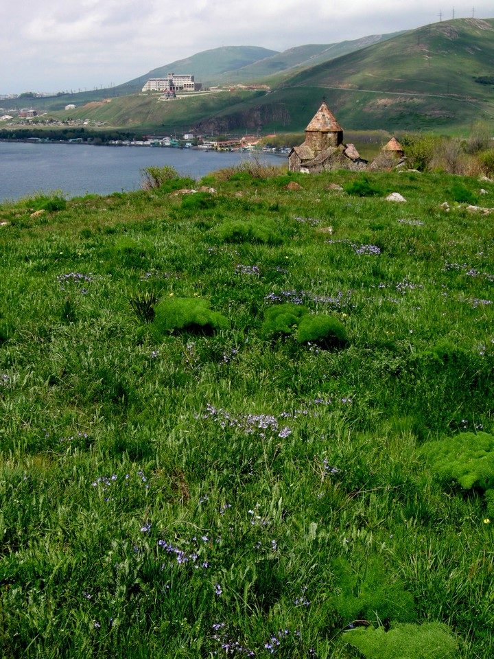 Meadow with flowers behind Sevanavank monastery