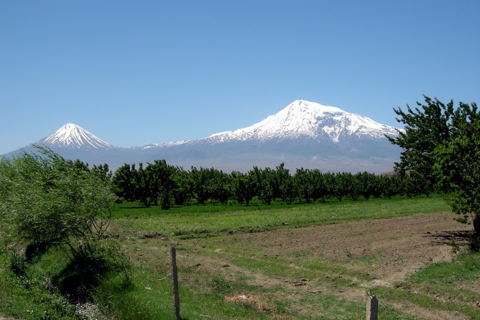 Lesser Ararat, Greater Ararat and vineyards