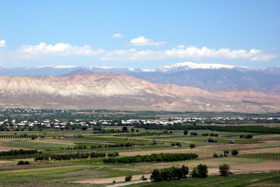 Araratin tasankoa