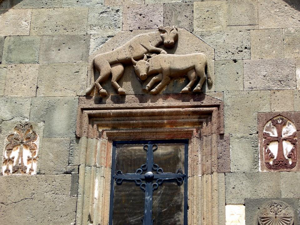 Leijona hyökkää härän kimppuun