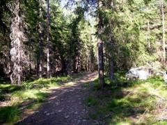 Polku kohti Sipoonkorpea