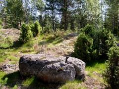 Kiviä ja katajia