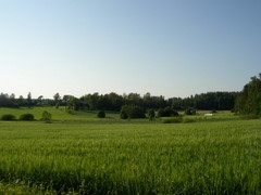 Fields at Sotunki, Vantaa