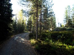 Track from Siikajärvi to Nuuksio National Park
