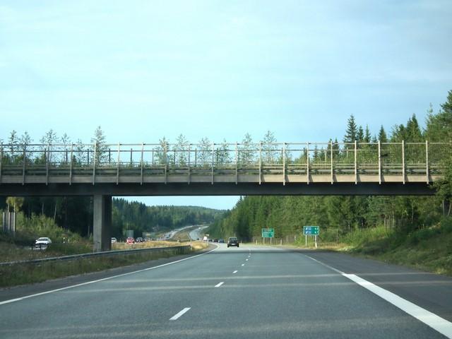 Eläinten ylikulkusilta lähellä Heinolaa (Valtatiet 4 ja 5, E75)