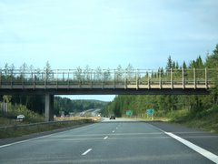 Bridge for forest animals near Heinola (Highways 4 and 5, E75)