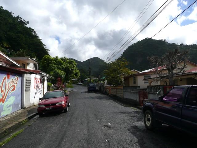 Orchid Lane