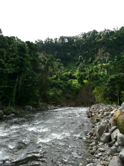 Rivière Roseau (2)