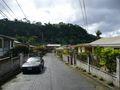 Gommier Street (3)