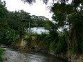 Roseau-joki