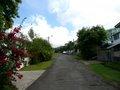 Rose Street (2)